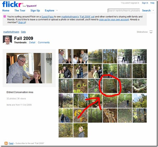 Downloading photos from a Flickr Guest Pass page