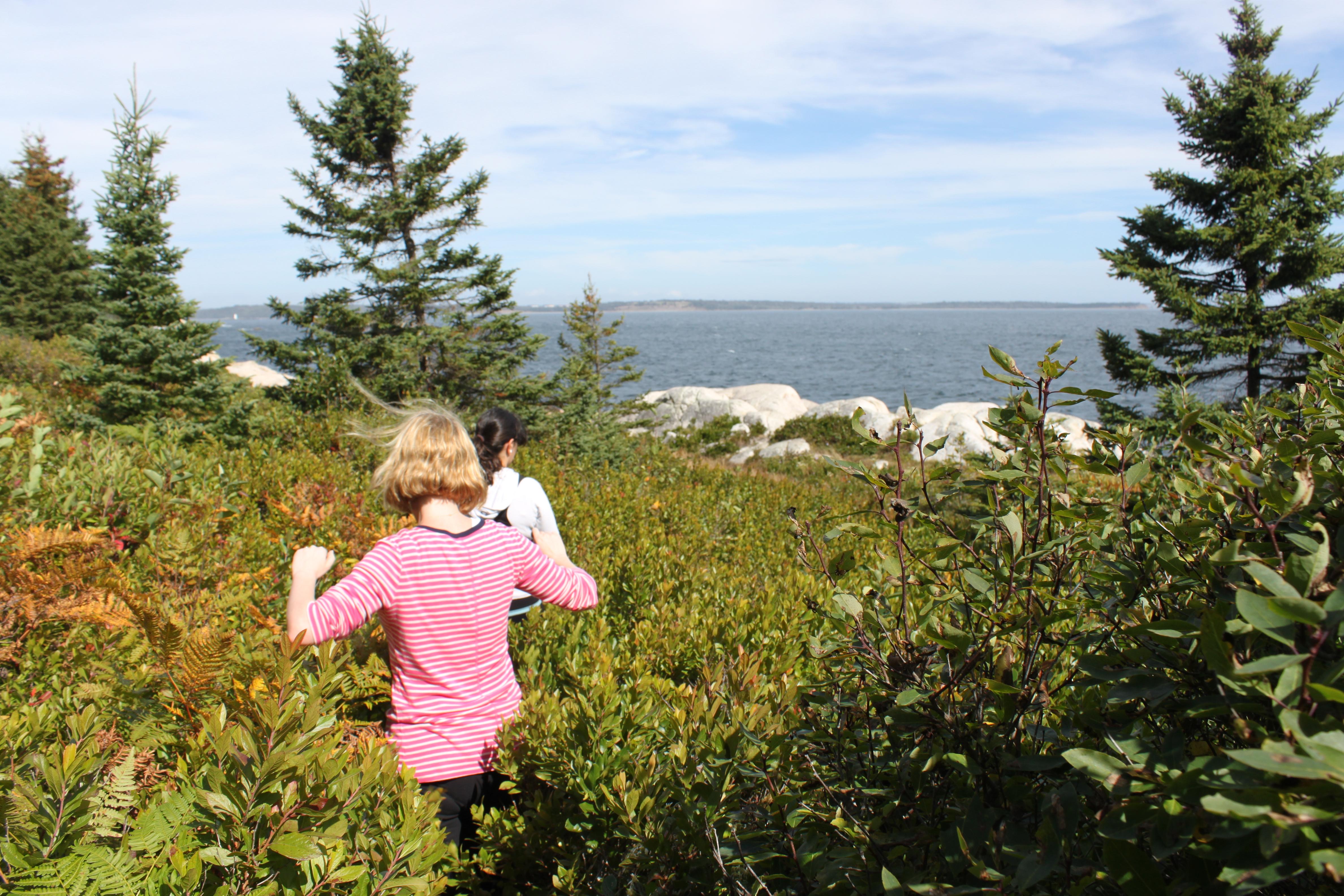 Wandern in Halifax