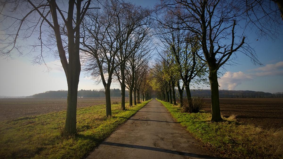 Dezember im Rheinland